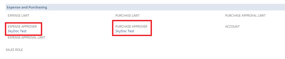 NetSuite SkyDoc approval purchase approver